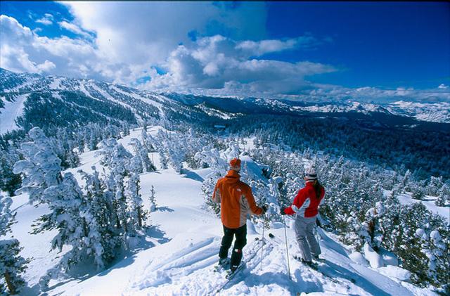 В преддверии зимних каникул. Куда поехать отдыхать зимой?