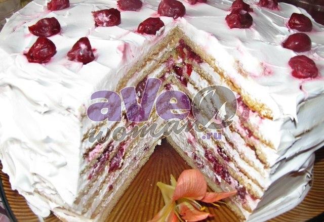 Медовый торт с вишней рецепт